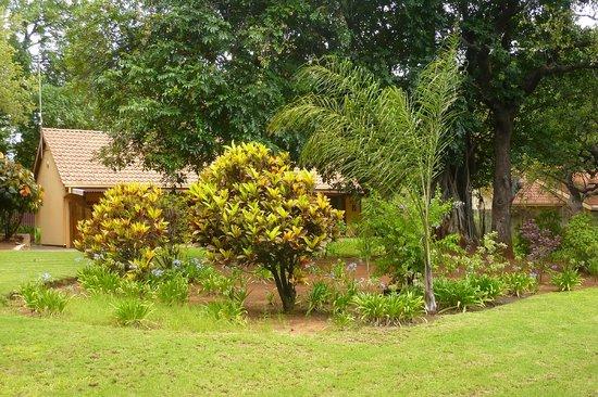 Sunbird Lodge: Garden