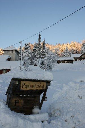 Aust-Agder, Norveç: Vinter på Røyland