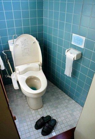 Guest Inn Chita : Туалет со специальными тапками. В своей обуви ходить туда не принято.