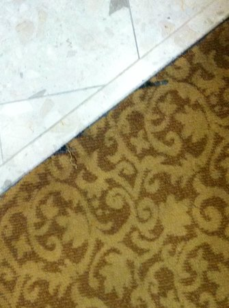 The Grove Hotel: Worn out 1980's carpet.