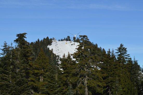 Grouse Mountain: Skiing