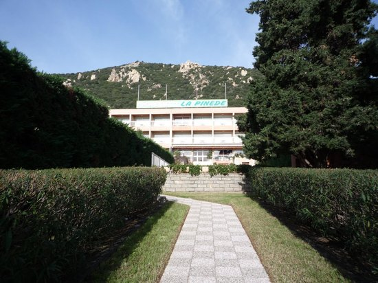Hotel La Pinede : l'hôtel