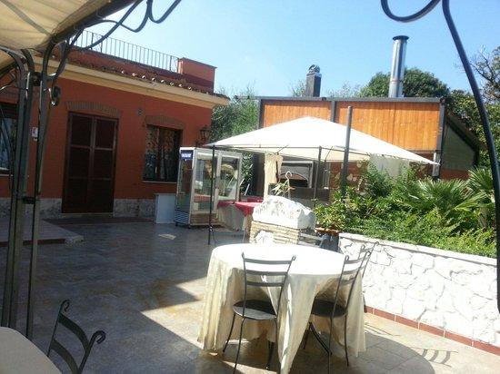 un terrazzo su Roma - Picture of La Terrazza SRL, Monte Porzio ...