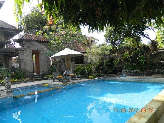 Puri Sading Hotel : the pool