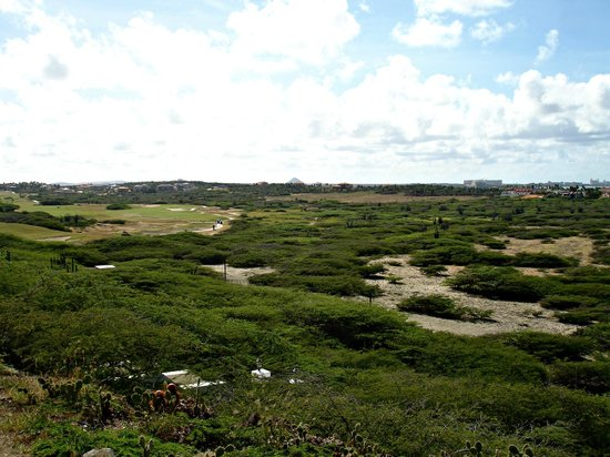 Hyatt Regency Aruba Resort and Casino: View at the western end of the island