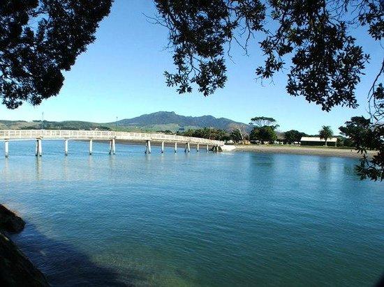 Raglan Scenic Tours: Raglan Harbour foot bridge