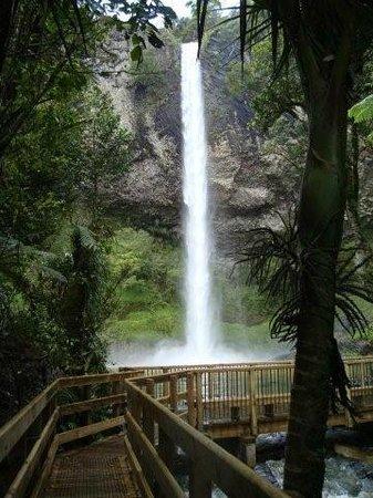 Raglan Scenic Tours: Bridal Veil Falls