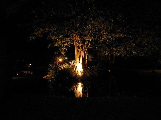 Sigiriya Village Hotel : Part of the garden