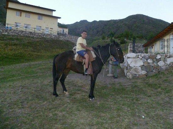 El Pinar en La Ventana : Cabalgata1