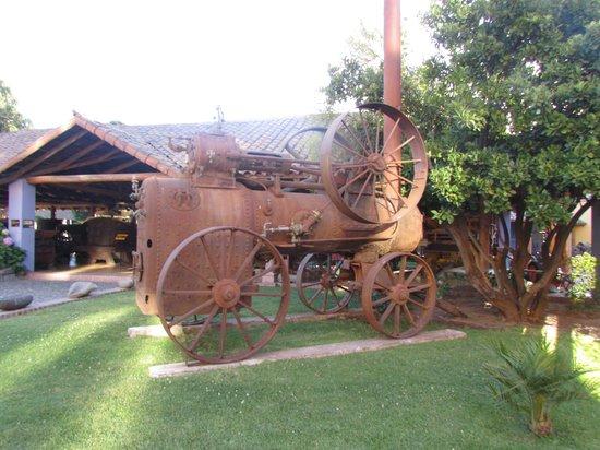 Colchagua Museum: Solo fotos del patio.