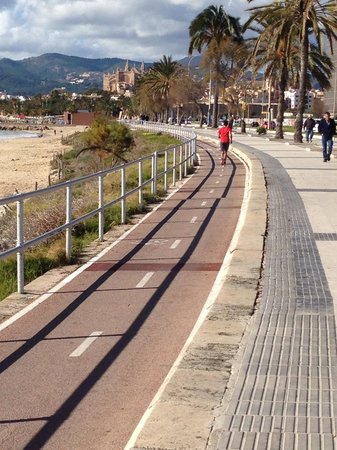 AluaSoul Palma: Cycle track going to Palma.