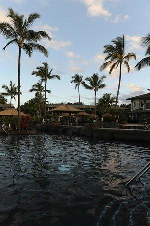 Westin Princeville Ocean Resort Villas : Pool
