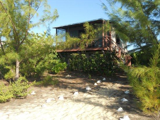 Chez Pierre Bahamas: Lodge