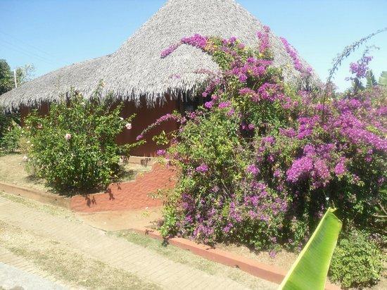 Orangea Village: villaggio