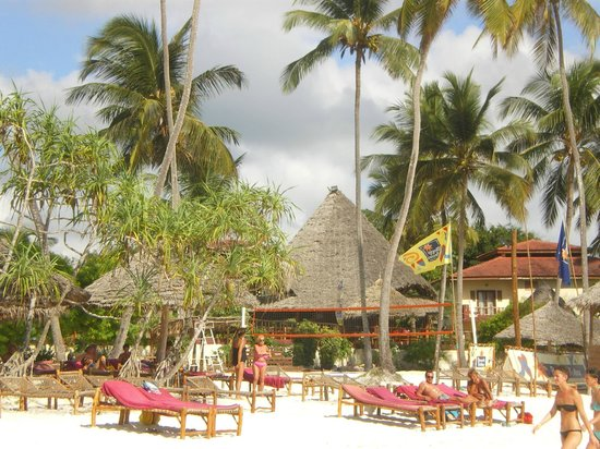 VOI Kiwengwa Resort: PALME SOPRA IL LETTINO