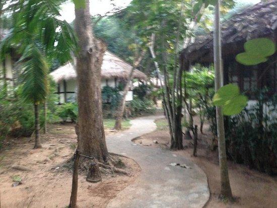River Kwai Resotel : Sentieri