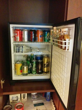 TAV Airport Hotel: Mini bar