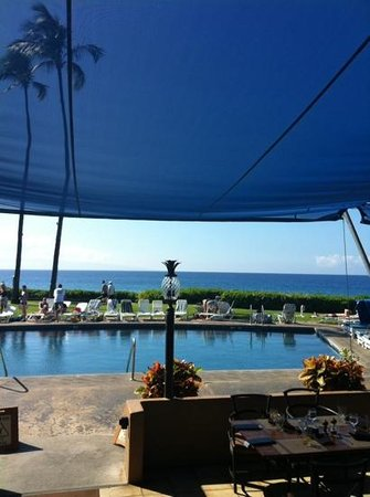 Royal Lahaina Resort: pool/bar area view