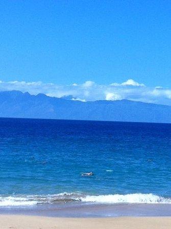 Royal Lahaina Resort : ocean view