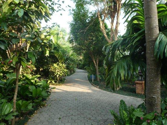 Laluna Hotel and Resort: camino habitacion