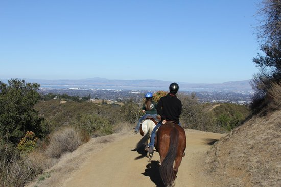 Garrod Farms Riding Stables: trail riding