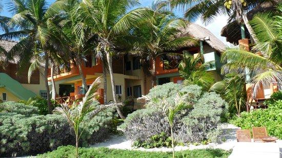 Nueva Vida de Ramiro : the bungalows