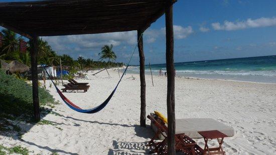 Nueva Vida de Ramiro : hammock and beach chairs