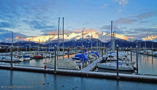 Chinooks Waterfront Restaurant: Great view from Chinooks Waterfront