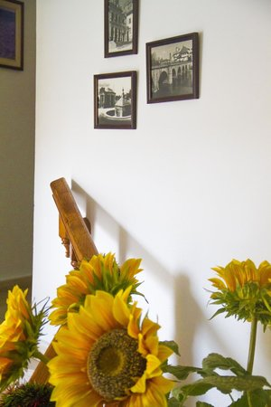 Residencial Casa Das Termas : habitacion