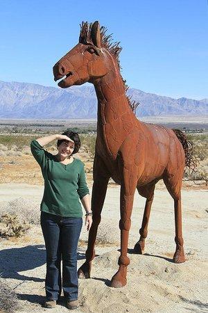 Galleta Meadows : Horse