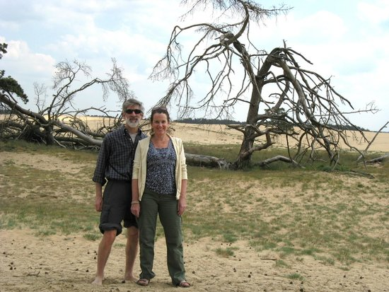 De Hoge Veluwe National Park: Not a clue where we were in the park but it was beautifully desolate !