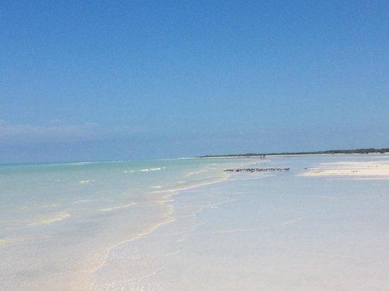 Villas Paraiso del Mar : Il mare