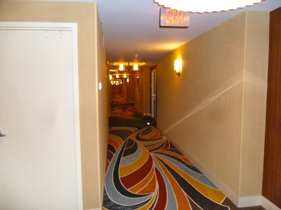 Hilton Omaha : Long hallway with nice carpet
