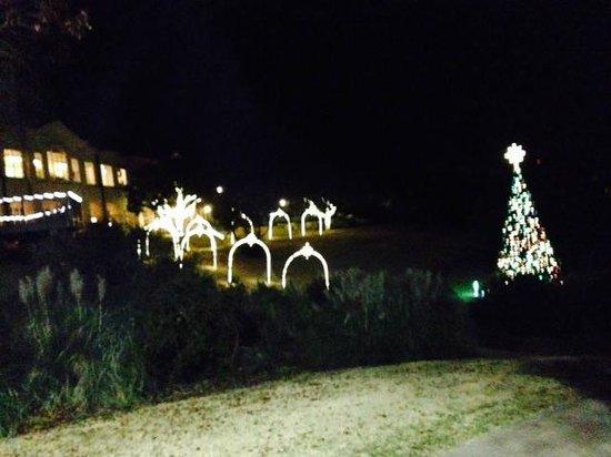 Omni Barton Creek Resort & Spa: adornos propios de navidad