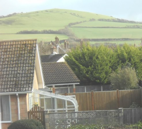 Seadale Bed & Breakfast: View of 'Hardy's Monument' on top of the hill from the room..
