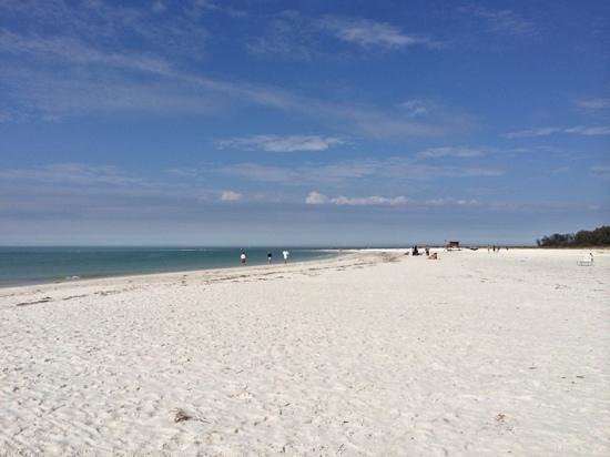 Beautiful February day on Lido beach!!