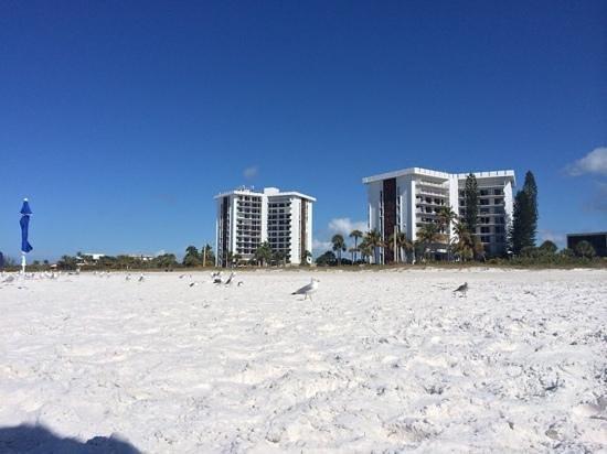 lido beachfront