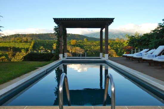 Asclepios Wellness & Healing Retreat: Swim with a sublime view