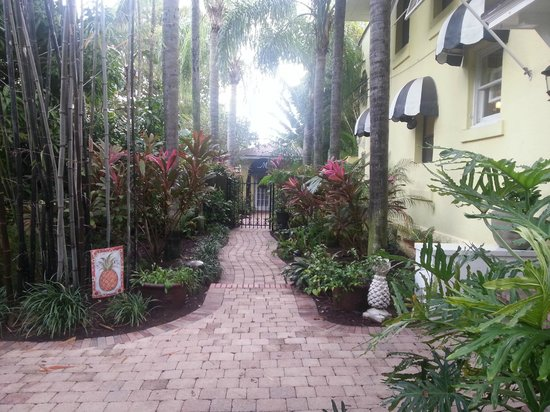 Mango Inn Bed and Breakfast: Side yard & more lush landscaping