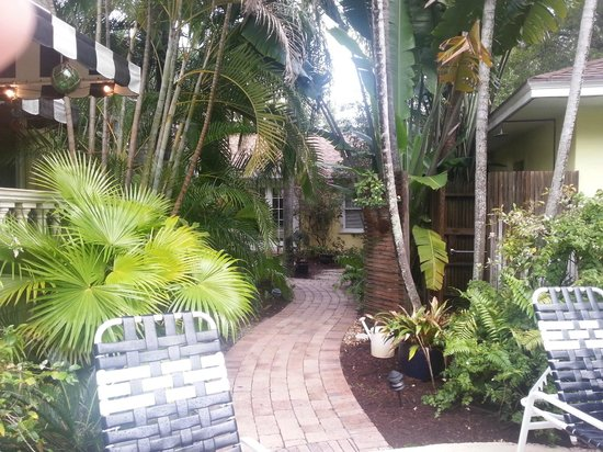 Mango Inn Bed and Breakfast: Side yard