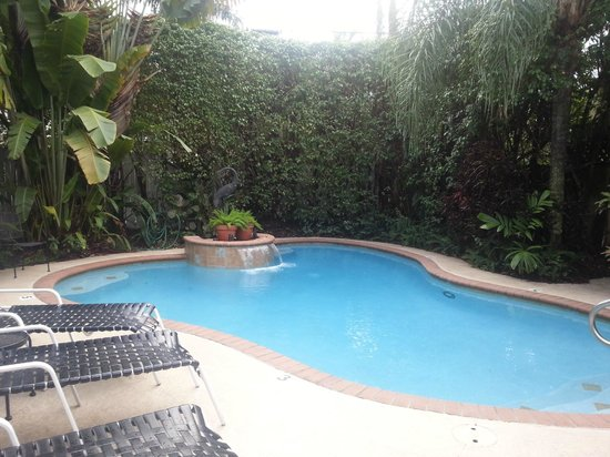 Mango Inn Bed and Breakfast: Pool & lush landscaping!