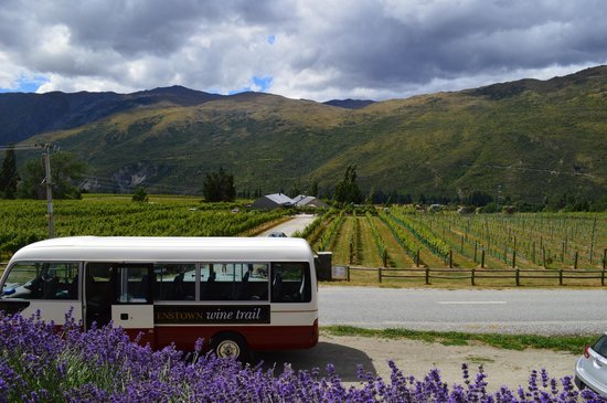 Looking out over the Queenstown Wine Trail Winery Mobile from Mt Rosa Winery