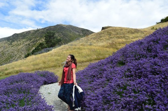 Queenstown Wine Trail: Frolicking amongst the Lilacs @ Mt Rosa Winery, Otago