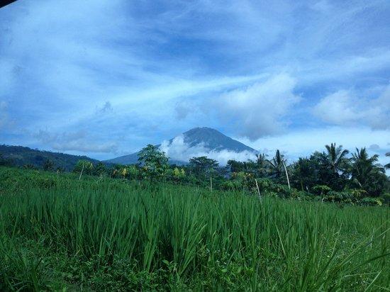 Villa Sumbing Indah: le volcan Sumbing