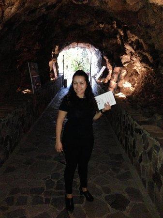 Hotel Jardín Tecina: Tunel de llegada a la zona inferior de piscinas