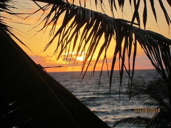 Playa Xcanan Cabanas Tulum: view