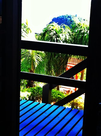 Gringos B&B: From our room.