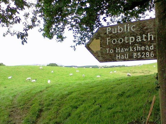 Hawkshead Hall Campsite: the path across the fields from Latterbarrow to near the campsite