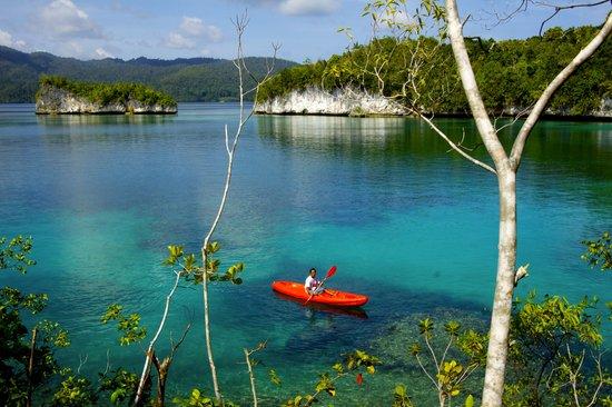 The clif bar picture of raja ampat doberai eco resort raja ampat tripadvisor - Raja ampat dive resort reviews ...