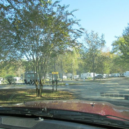Holiday Trav-L-Park : Campground view